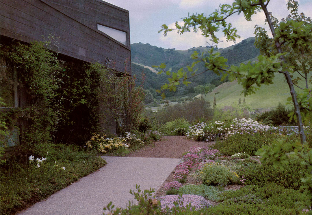 Pacific Horticulture Society | Designing a Garden of Native Plants