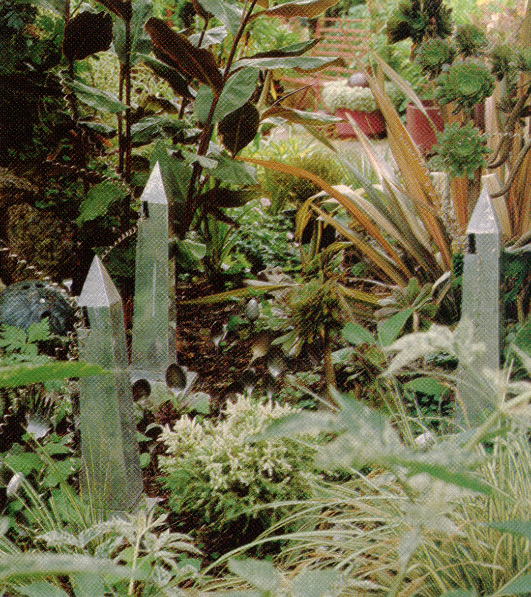 Pacific Horticulture Society | Marcia\'s Garden: a Conversation