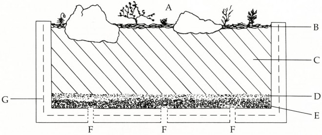 Sectional diagram of a planted trough showing: A, rocks and plants; B, layer of rock chips; C, prepared soil mix; D, layer of peat roughage; E, layer of fine gravel; F, drainage holes covered with wire mesh; G, hardware cloth reinforcing basket. After a diagram in Davidsonia, Spring '74