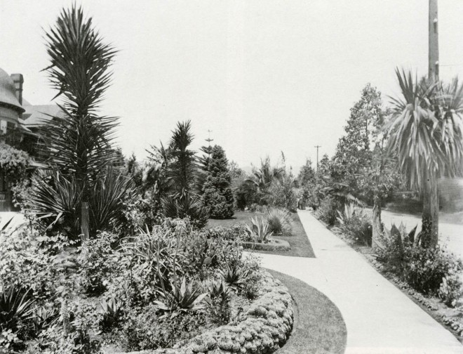 In affluent neighborhoods, such as this one in Los Angeles, front yards were planted to display owners' taste and horticultural savvy. Early in this century gardens were emblems of a harmless kind of snobbery — one that persists, and helps perpetuate great interest in gardening. Photograph courtesy of the California Historical Society Title Insurance and Trust Collection, Department of Special Collections, University of Southern California Library
