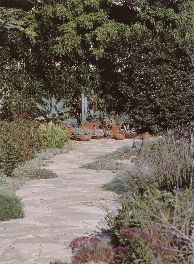 29A meandering path through plantings of herbs, succulents, and groundcovers between house and swimming pool. Photograph by RGT
