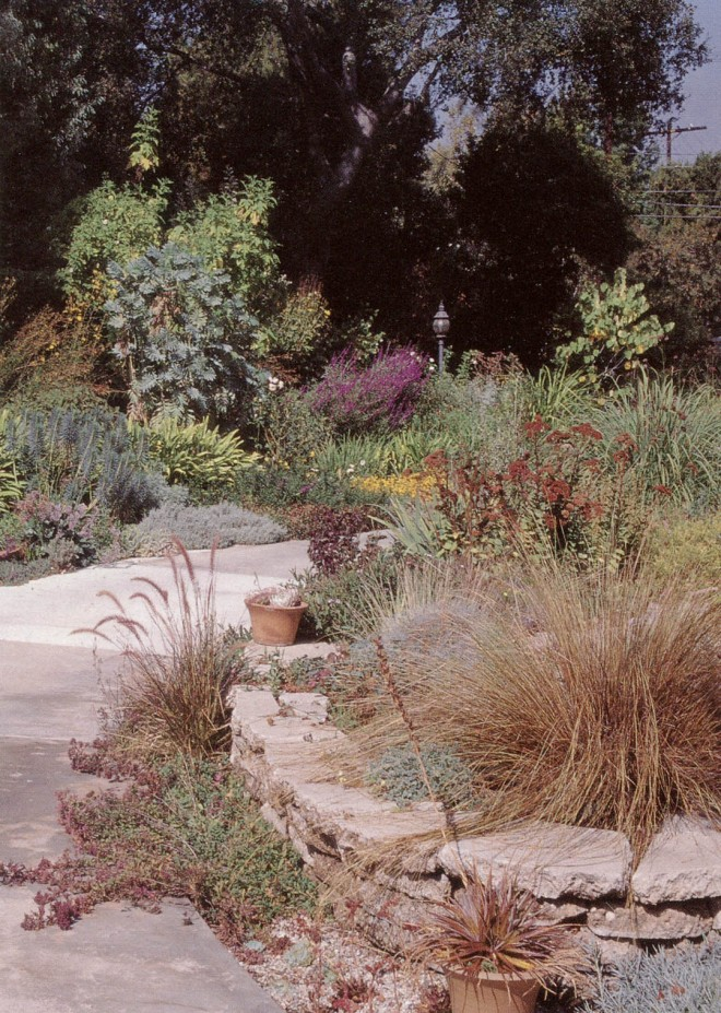 """The raised """"rock garden"""" with the west drive border beyond. Photograph by RGT"""