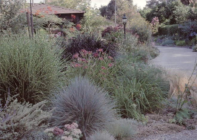 The grass garden along the drive in late spring. Author's photograph