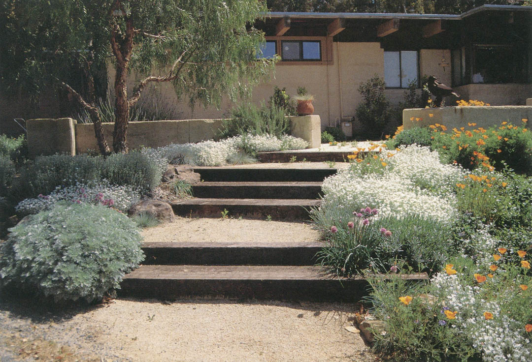 simple pattern of timber steps decomposed granite paving and rammed earth wallsall - Mediterranean Garden