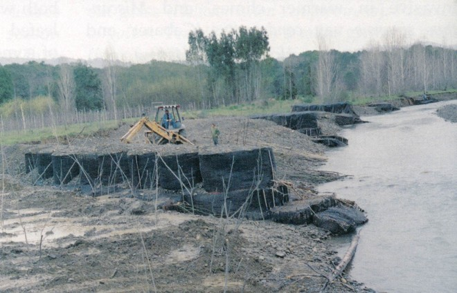 "Planting trees during the first spring after installation of the ""bio-cells,"" which are made of geotextile fabric and filled with on-site river-run gravel"