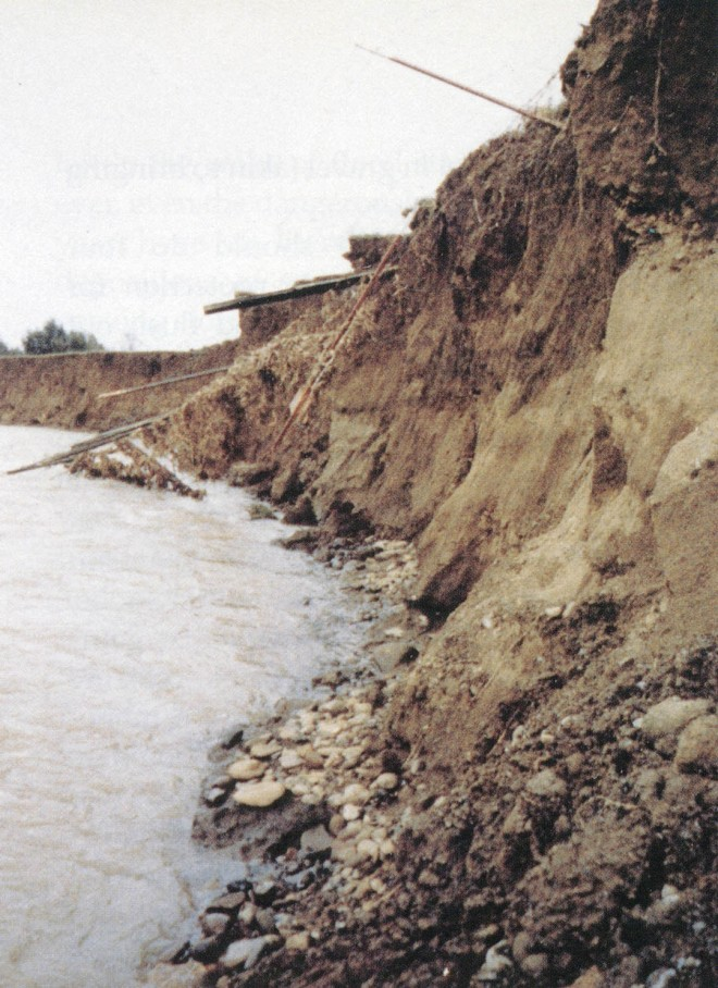 A typical cut bank on Anderson Creek before stabilization