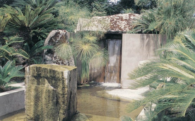 The stone fountain with sago palms (Cyca revoluta)