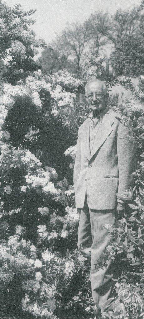 WB Clarke, aged 75, in 1952. Clarke's nursery in San Jose supplied many plants for DuPont's Winterthur garden. Photograph by Brian O Mulligan