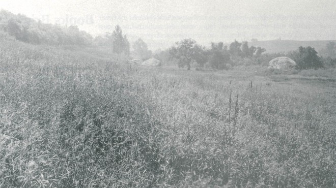 The Garden site in 1926, looking south towards the Blaksley Boulder across a weedy pasture that would become the Meadow. Photographs from the Blaksley Library archives, unless noted otherwise
