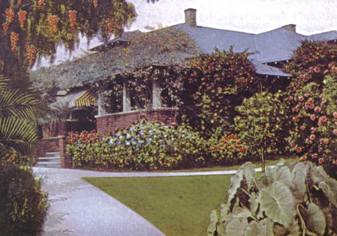 Postcard view of a rose-bedecked bungalow in Los Angeles in the 1920s. Photographer unknown