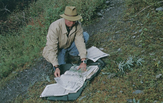 Responsible field collecting includes pressing branches with foliage and flowers or fruit for herbarium specimens that will be distributed to various botanical institutions