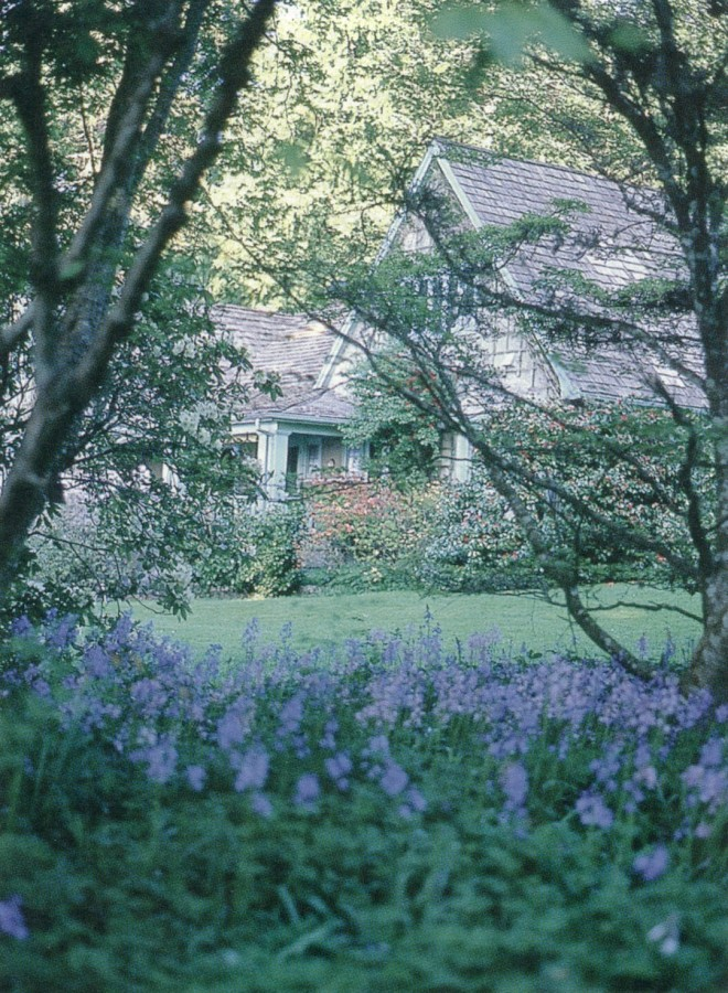 The Milner home viewed from the glade, bluebells (Hyacinthoides non-scriptus) in the foreground. Authors' photographs, except as noted