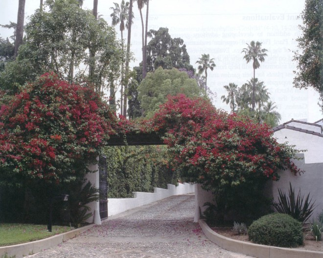 Entrance to the Watterson-Martin Residence in Pasadena, with the original cobblestone driveway flanked by bougainvillea; visible beyond are steel arches covered with blood-red trumpet vine (Distictis buccinatoria).  Author's photographs