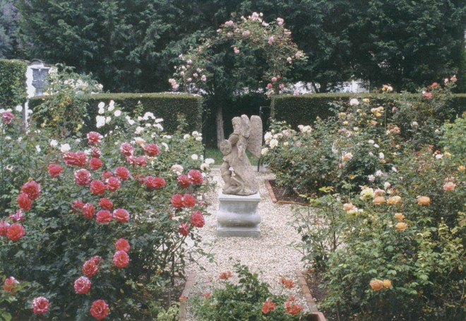 The rose garden in full bloom