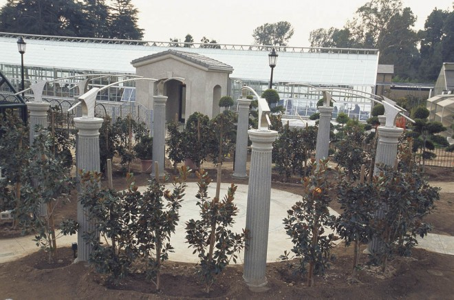Classic columns and shaped southern magnolias (Magnolia grandiflora) will create a circular room in the Huntington's new Children's Garden