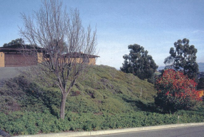 A fire-safe landscape with dwarf coyote bush (Baccharis pilularis 'Twin Peaks') used as a fire-resistant ground cover; toyon (Heteromeles arbutifolia), at lower right, is relatively fire resistant; major trees have been kept away from the house