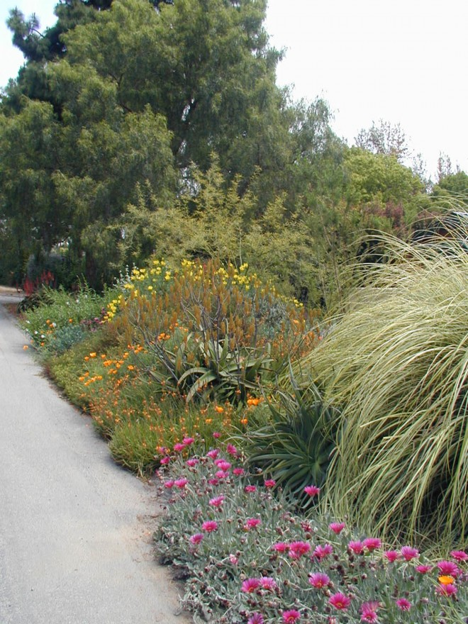 A thickly planted berm screens the street from the front entry garden
