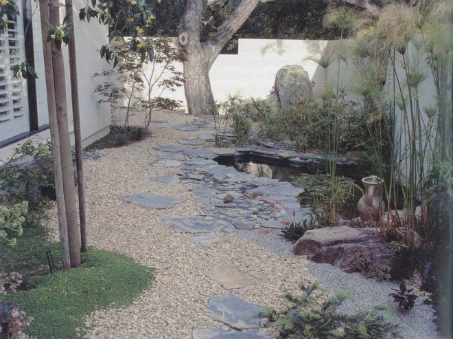 The Zen garden in the entry court of the Valentine home, a small pond edged in slate and planted with several different papyrus (Cyperus spp.). Photograph by Saxon Holt