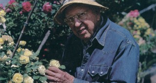 Ralph Moore with one of his yellow hybrids. Author's photographs