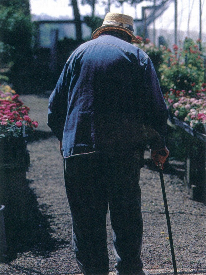 Ralph Moore in his rose nursery