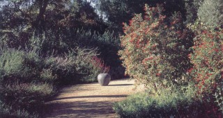 Decomposed granitic paths are broad and gracious and can accommodate the luxurious, sometimes unruly, growth of the salvias. The only artwork in the garden, a bronze apple, has been placed in this wide path. It is conspicuous in sunlight but almost disappears as early and late shadows fall across it. Photograph by Bart O'Brien