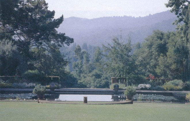 A view across lily pond to the Santa Cruz Mountains in 2004. Photographs by RGT, except as noted