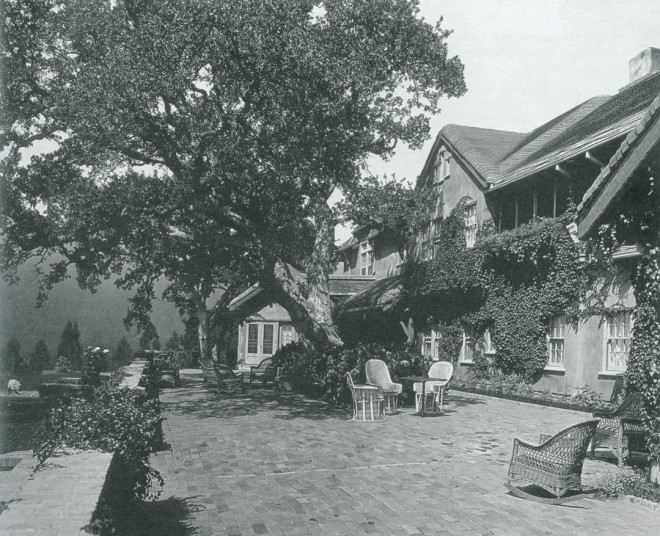 The brick terrace with original valley oak (Quercus lobata), estimated to be ca 1930s. Photograph courtesy Environmental Design Archives, UC Berkeley