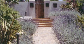 Los Altos Hills garden by Kathleen Craig. Photographs by RGT