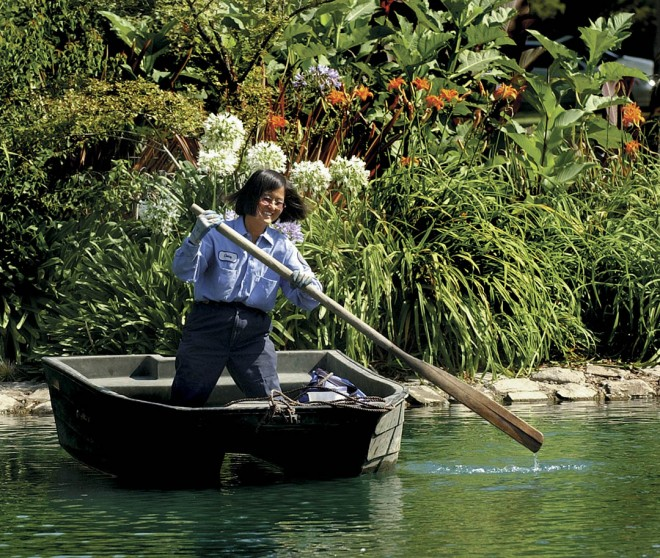 Daisy Mah rows to her island garden. Photograph by Sacramento Bee/Owen Brewer