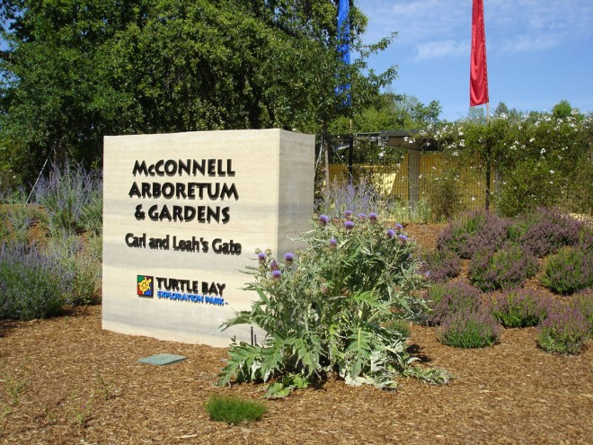 McConnell Arboretum & Gardens at Turtle Bay Exploration Park in Redding, California. Photographs by Fred Coe
