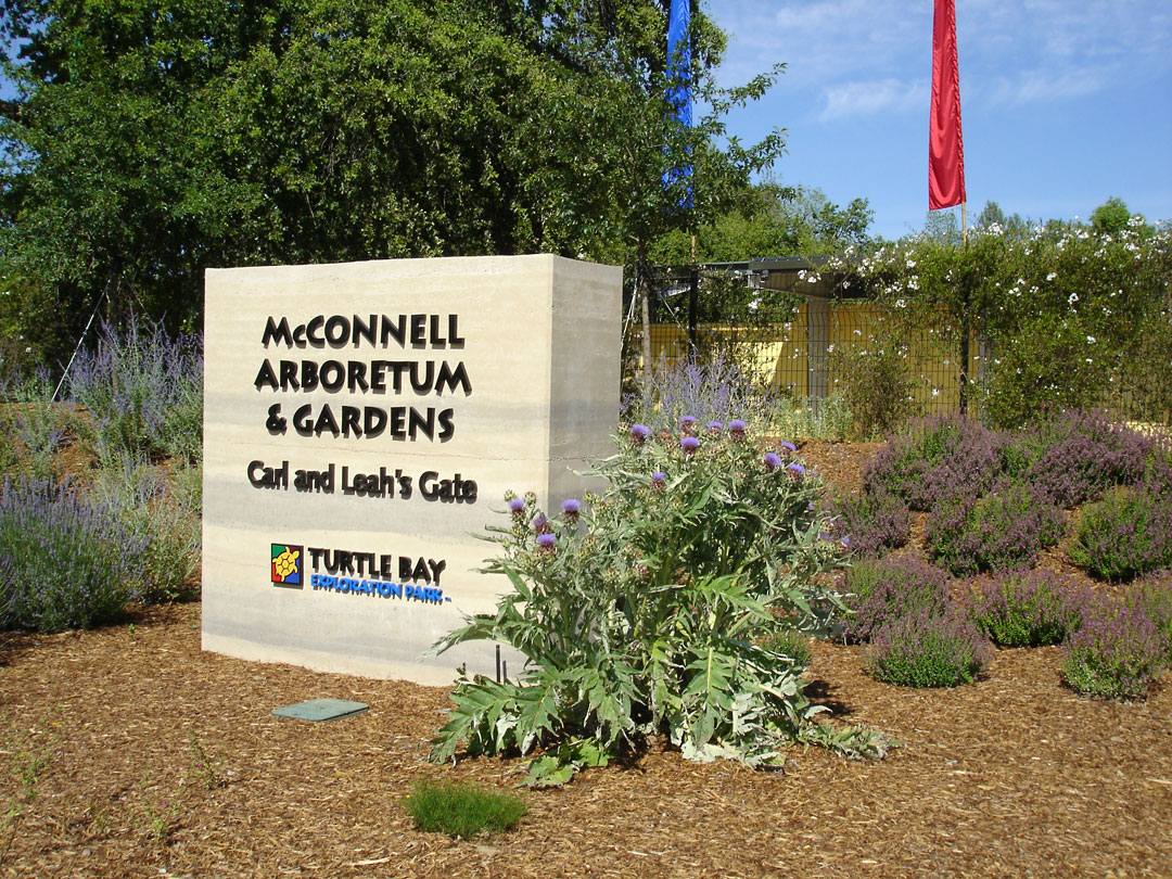 Pacific Horticulture Society A New Garden For The Northern Central Valley