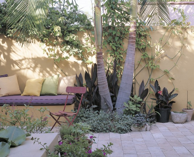 Strong colors and bold forms enliven the small rear garden
