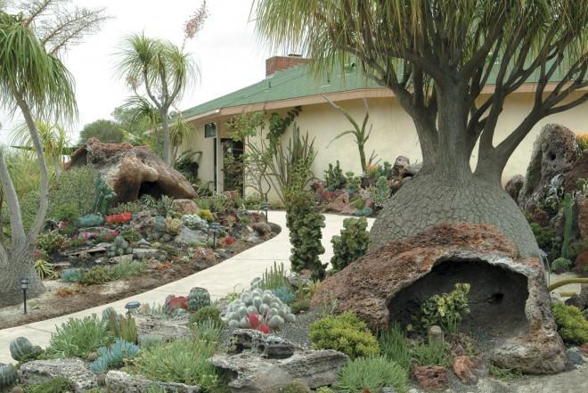 The new Undersea Garden outside the Ecke Building at Quail Botanical Gardens in Encinitas, California. Photographs by Bob Wigand