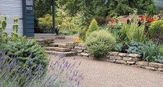 The sloping front bed, as viewed from the driveway. Crisply detailed stone walls throughout the garden contrast with the overflowing abundance of the plantings. Photographs by Buell Steelman