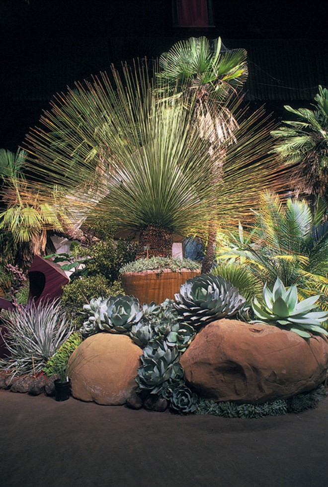 The award-winning UCBG garden at the 2000 San Francisco Flower & Garden Show provided inspiration for, and featured many of the arid-exotics now employed in, the new entrance garden. Photograph by Stewart