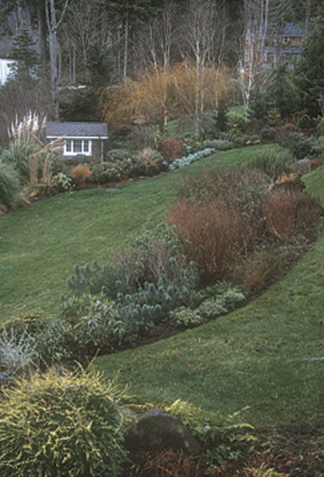 Same view in winter, with stems of deciduous shrubs and trees providing colorful accents against the curving lines of the beds