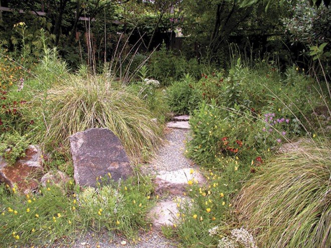 A simple gravel path leads into the meadowy glade in the rear garden