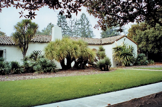 Bold plantings of giant dracaena (Cordyline australis) and yuccas suit the architecture of the Gifford home