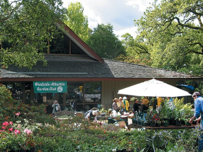 The Woodside Library provides a backdrop for the annual plant sale, organized by the Woodside-Atherton Garden Club to fund the maintenance of the library's native plant garden. Photograph by Tina Dreyer