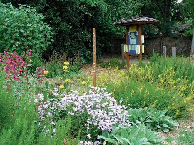 The information kiosk in the waterwise garden at the Master Gardeners' Demonstration Gardens in Palo Alto, with (from left) yellow Jerusalem sage (Phlomis fruticosa), lavender Verbena lilacina 'De la Mina', and yellow Bulbine frutescens. Author's photographs