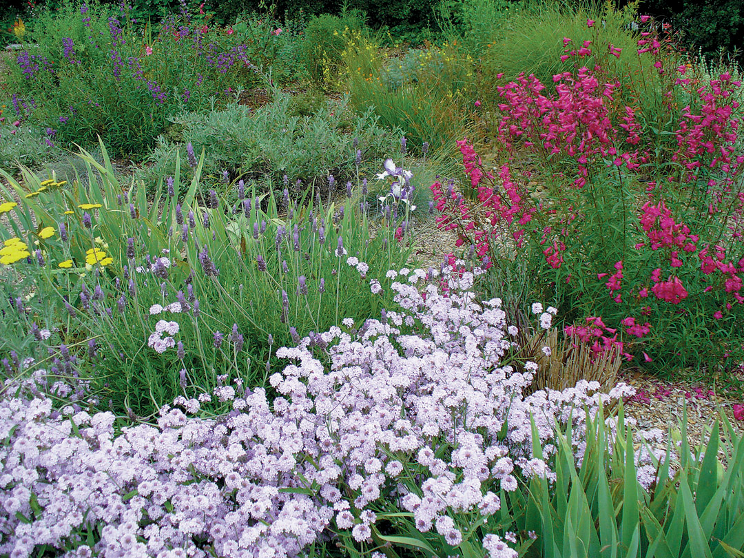 Water Wise Garden Designs Water Wise Gardening What Are All These
