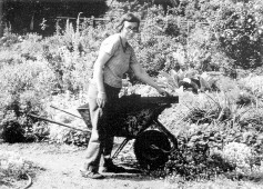 Barbara Worl with wheelbarrow at the borrowed land on Cowper Street, Palo Alto, where she gardened for twenty years. Photograph by Mary Avery - See more at: http://www.pacifichorticulture.org/articles/barbara-worl-a-profile/#sthash.4RgQQnWw.dpuf