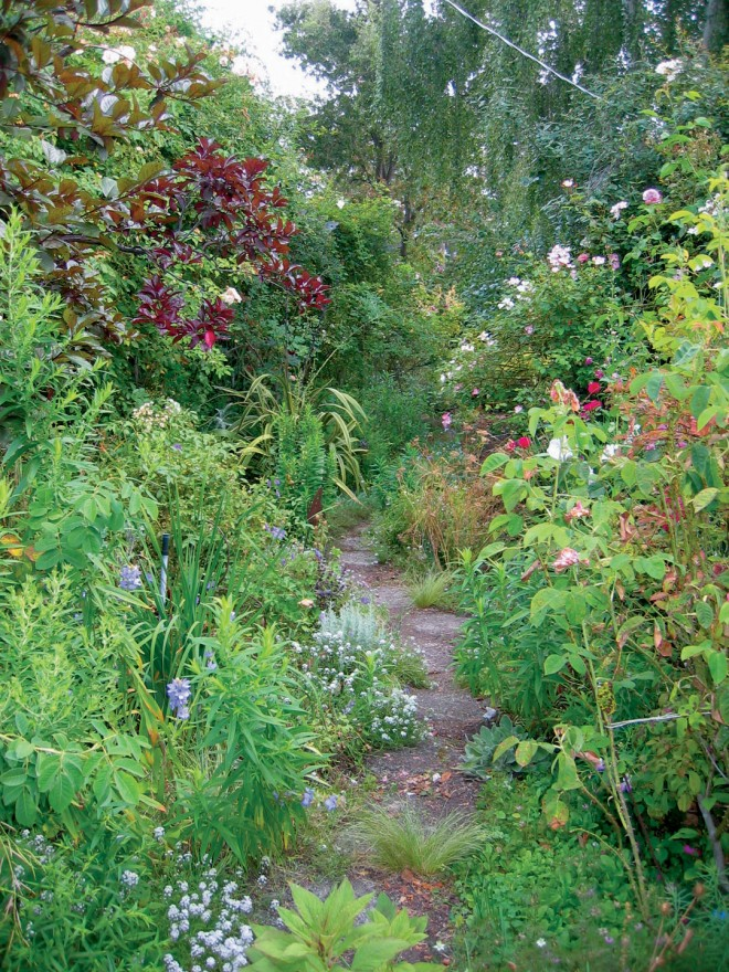 A typical path through Barbara Worl's garden, hard edges softened by an abundance of growth - See more at: http://www.pacifichorticulture.org/articles/barbara-worl-a-profile/#sthash.4RgQQnWw.dpuf