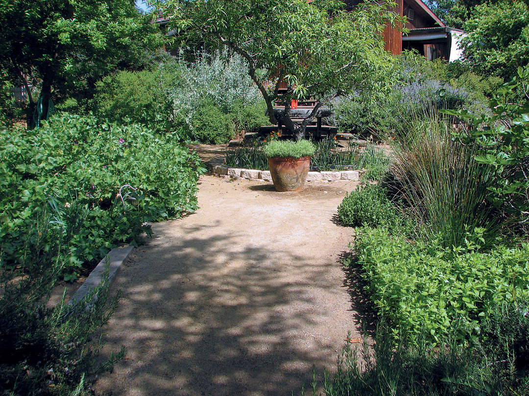 Pacific Horticulture Society | Landscaping with Natives in San Diego