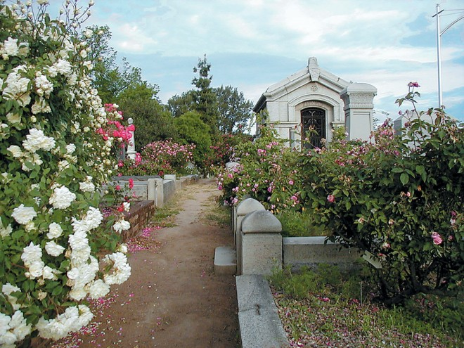 "The Mausoleum with, from the left, 'Les Pactole', 'Ragged Robin' (red), a large pink found rose (""Sawyer Plot T"") in the distance, and a paler pink found rose (""12th Avenue Smoothie"") sprawling over the granite curbing - See more at: http://www.pacifichorticulture.org/articles/sacramentos-historic-rose-garden/#sthash.FoT0pU0Q.dpuf"