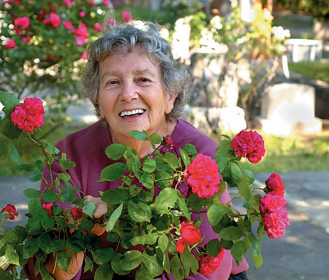 "Barbara Oliva, head of the Historic Rose Garden, with a found rose (""Coulterville Red""). Photograph courtesy Sacramento Bee - See more at: http://www.pacifichorticulture.org/articles/sacramentos-historic-rose-garden/#sthash.FoT0pU0Q.dpuf"