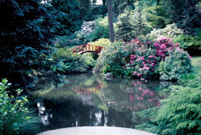 A red bridge focuses our attention on the length of this watery space, thus accentuating its size (Kubota Garden, Seattle) - See more at: http://www.pacifichorticulture.org/articles/making-gardens-seem-bigger-part-ii/#sthash.UkjxOBix.dpuf