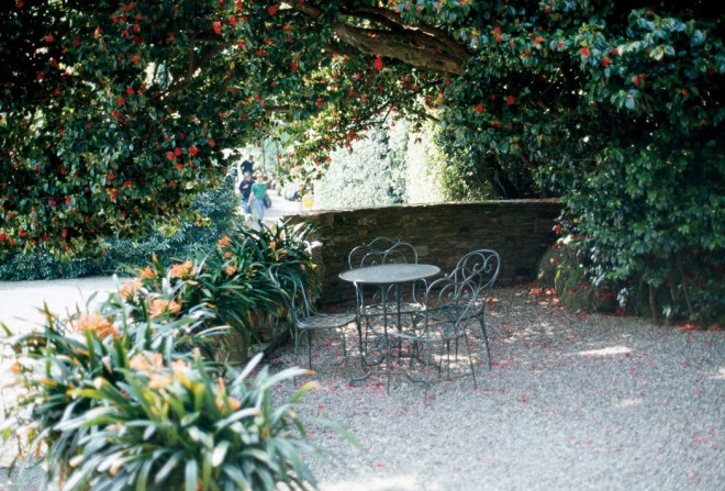 The elegant, understated sitting area represents only one way of designing a garden space. In contrast is the garden overflowing with plants - See more at: http://www.pacifichorticulture.org/articles/making-gardens-seem-bigger-part-ii/#sthash.UkjxOBix.dpuf