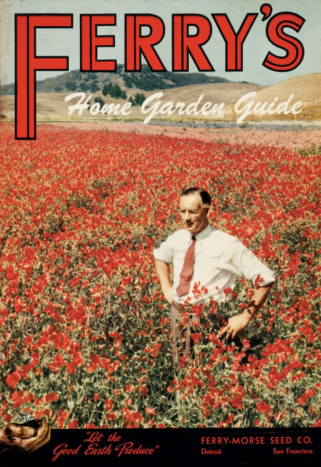 Front cover of Ferry's Home Garden Guide showing a field of red sweet peas in Lompoc, California, date unknown. Photograph courtesy California Historical Society