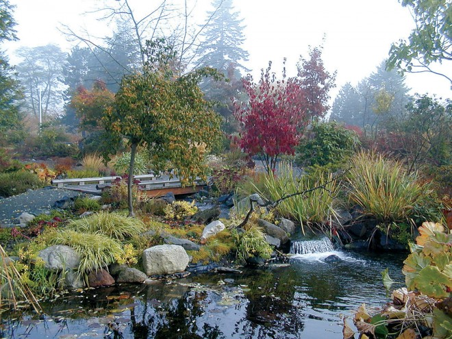 A portion of the pond and plantings in Elda Behm's Paradise Garden